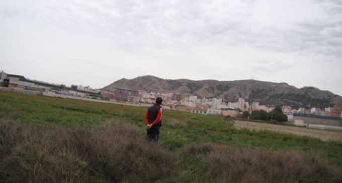Los Verdes sacan a licitación doce parcelas del huerto urbano de Altos de la Condomina