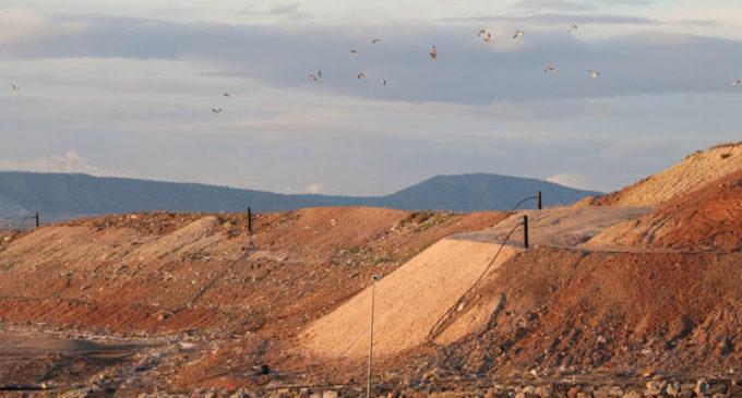 Plantean la construcción de un ecoparque fijo en Villena
