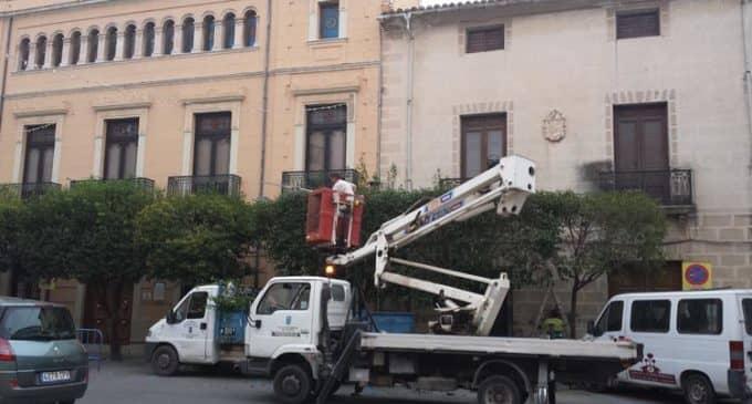 Las podas se realizarán en invierno en Villena con el nuevo contrato de mantenimiento de zonas verdes