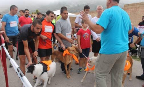 La Protectora organiza la 10º marcha canina y 8º carrera con perro