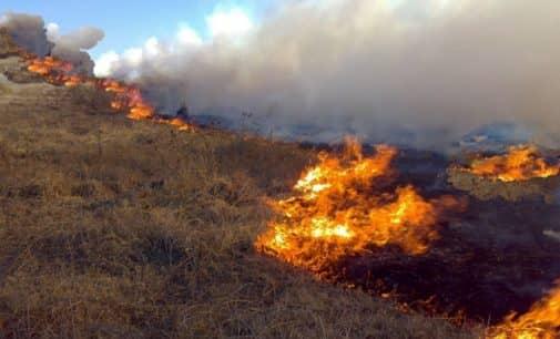 Los vecinos deben pedir cita para solicitar la quema de restos vegetales