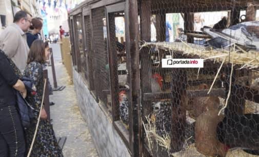 El alcalde garantiza la presencia de animales en las Fiestas del Medievo