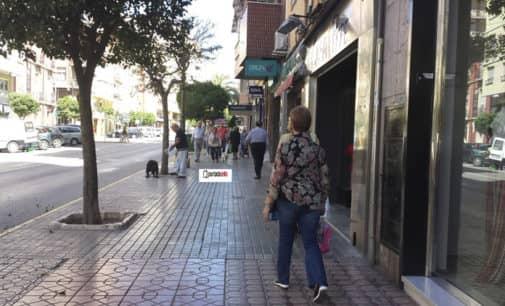 El Ayuntamiento aprueba la apertura del comercio el Jueves Santo