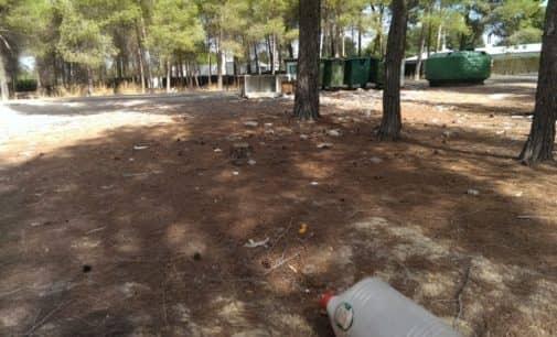 El PSOE pide la limpieza de la zona de 'Casas de Menor'