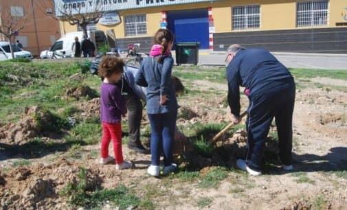 Medio Ambiente proyecta  ubicar 4.000 plantones con motivo del Día del Árbol