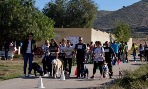 56 perros del albergue participaron en la Marcha Canina de la Protectora de Animales