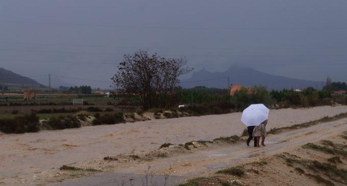 Piden que se declare Paraje Natural Municipal el cauce del Vinalopó