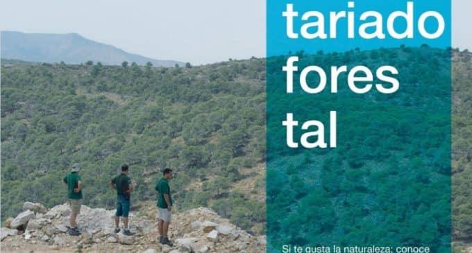 Organizan una charla sobre voluntariado forestal en el Espacio Joven de Villena