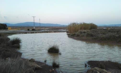 Los Verdes derivan el incremento de acumulación de aguas en la carretera de Caudete  a las obras del AVE