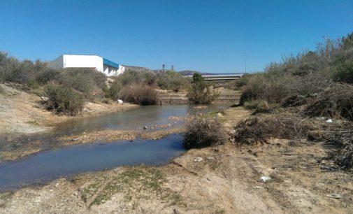 El equipo de gobierno de Los Verdes investiga los vertidos al rio Vinalopó