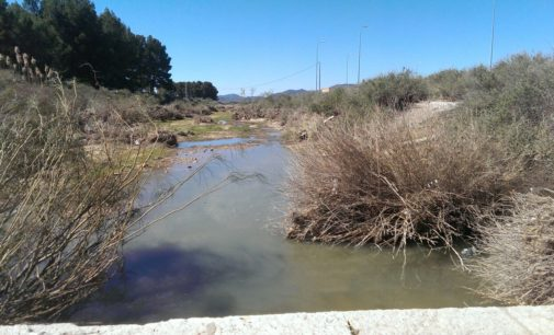 El PP insta al Consell a que ponga en marcha la recuperación de la cuenca del Vinalopó