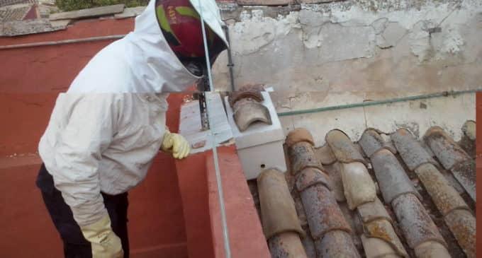 Los bomberos intervienen en una colmena de abejas ubicada en un tejado del casco antiguo de Villena