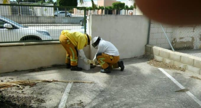 Los bomberos retiran un nuevo enjambre de abejas y retiran el aceite de la calzada tras una colisión