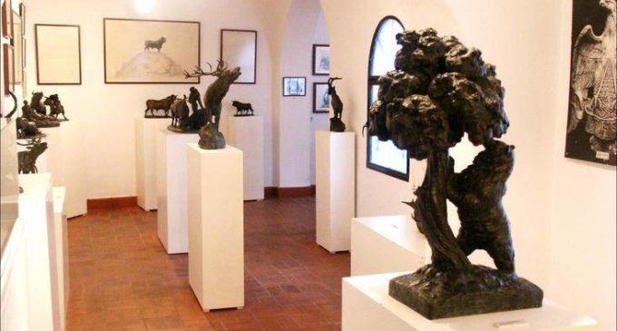 La Plaza de Toros acogerá una exposición sobre «El oso y el madroño»