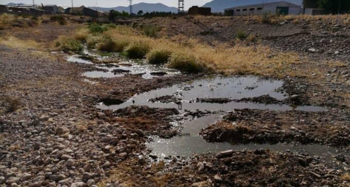 El Ayuntamiento denunciará ante el Seprona los vertidos continuos de aceite al rio Vinalopó