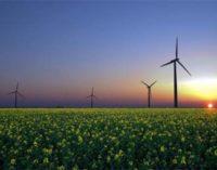 Se constituye la asociación Villena energía limpia