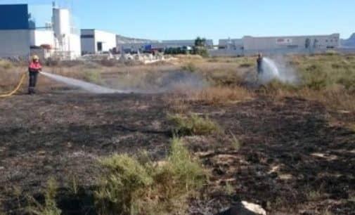 Arden mil metros cuadrados de matorral en Villena