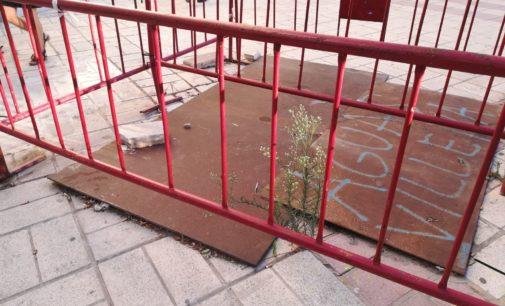 Un año de abandono de la plaza Las Malvas