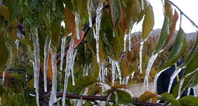 El termómetro se congela en Villena y  alcanza los -5 grados