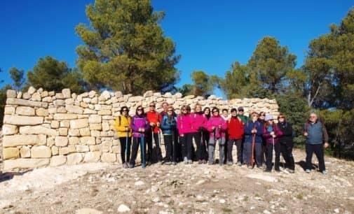 Aviana en el poblado ibero del Puig en Alcoy
