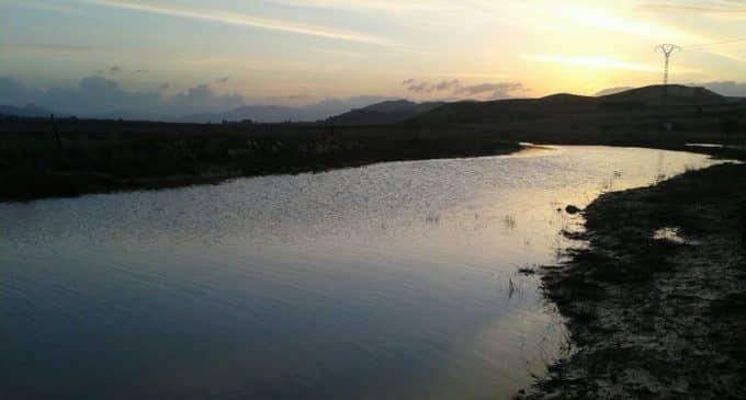 La lluvia nos deja imágenes de un rio Vinalopó caudaloso