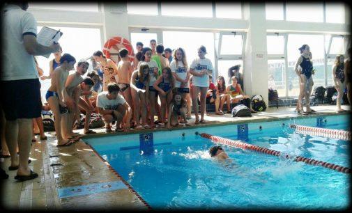 Diez nadadores del Club Natación Villena participan este fin de semaan en el VIII campeonato autonómico Alevín de invierno