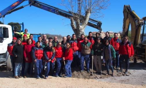 Plantan un árbol monumental en el futuro parque canino