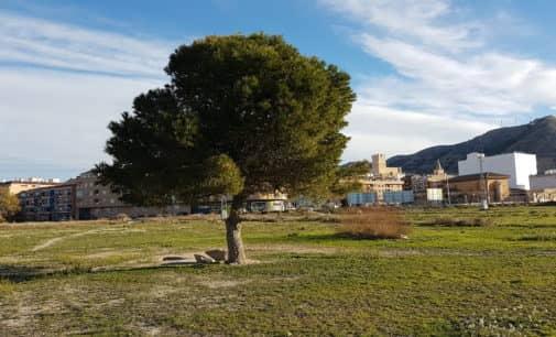 Villena reivindica el Día Mundial del Medio Ambiente
