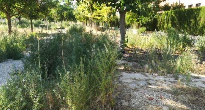 El PSOE pide el mantenimiento y mejora del jardín Poetisa Elena Montiel