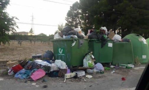 El PP solicita que se incremente la recogida de basura durante la ola de calor