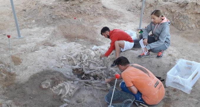 Comienzan las excavaciones del Museo en Casas del Campo