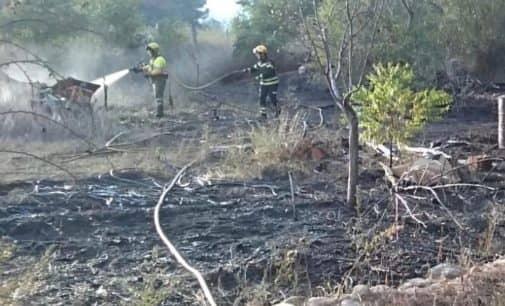 Arden 300 metros de masa forestal en Beneixama