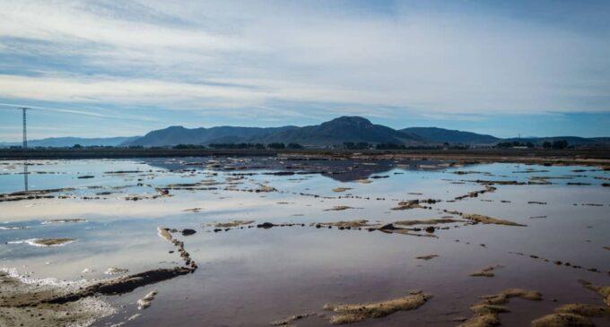 Conselleria plantea la declaración de Zona de Especial Conservación en Sierra Salinas y Cabecicos y Salero en Villena