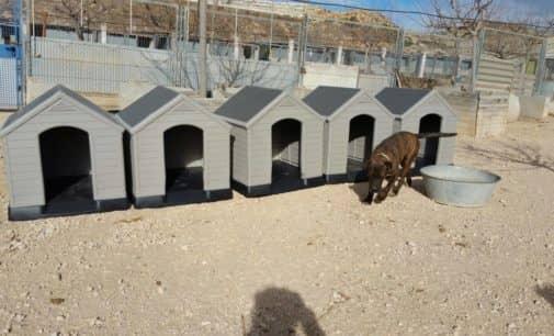 La Junta de Gobierno  Local aprueba el convenio con la Protectora de Animales por 67.000 euros