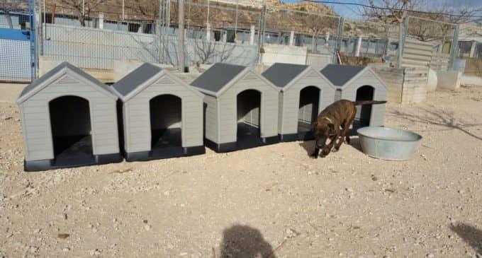 Villena invertirá 50.000 euros en mejorar y diseñar el albergue canino