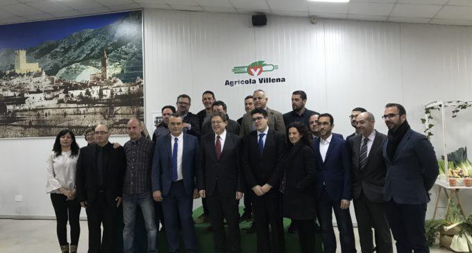 Agrícola Villena se adapta a las demandas de consumo con nuevos productos