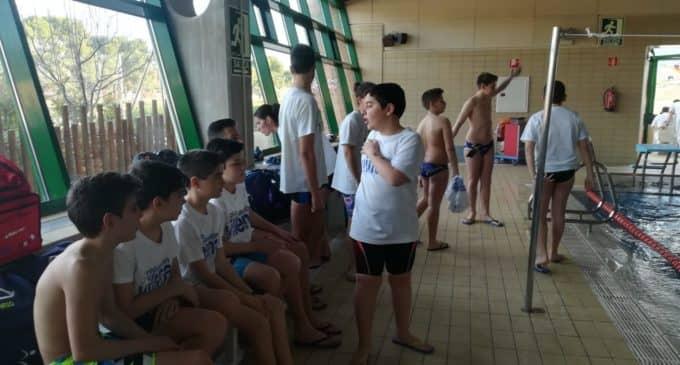 Buenos resultados para los del Club Natación Villena en la Liga Promesas