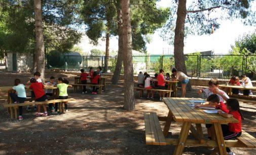 230 alumnos decidirán la inversión de los primeros presupuestos participativos infantiles de Villena