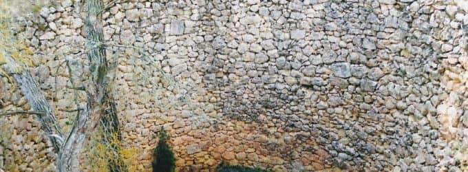 El Salicornio propone poner en valor los 6 neveros que se conservan en Villena