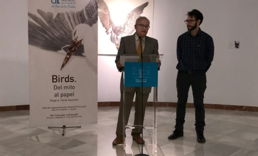 El villenense Diego Alberto Pardo Asunción expone Birds en el Palacio Provincial