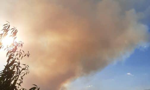 Unas 500 hectáreas de masa forestal podrían haber ardido en el incendio de Beneixama que sigue descontrolado
