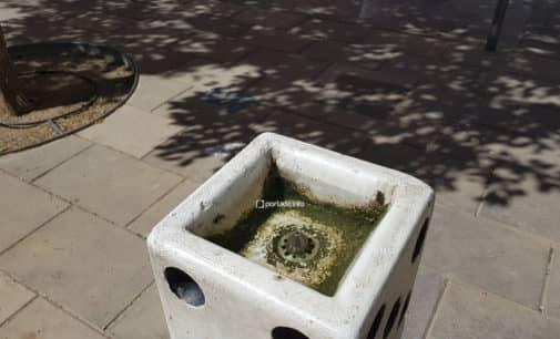 Denuncian el mal estado de las fuentes y surtidores de agua en Villena