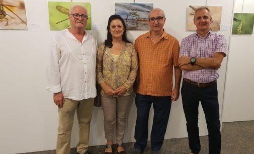 El villenense, Ricardo Menor, expone en la Casa de la Cultura de Lorca