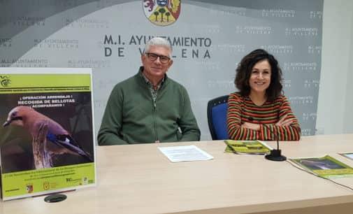Salvatierra Villena plantará 5.000 bellotas en Peña Rubia en un proyecto nacional contra la desertificación
