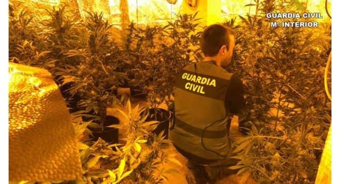 La Guardia Civil interviene 2,300 gramos de cogollos de marihuana listos para su venta