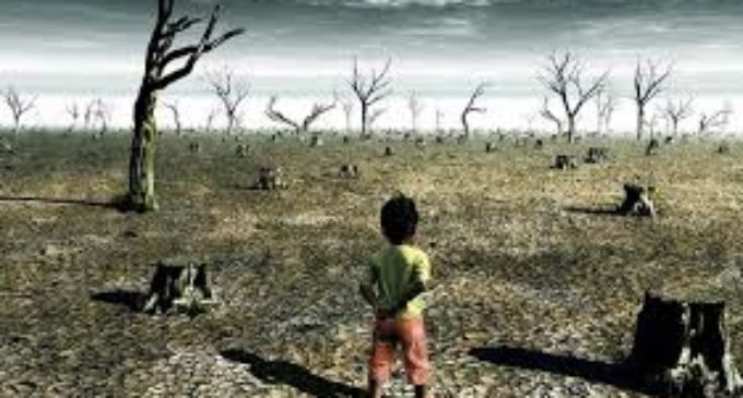 El mundo despertó ante la emergencia climática