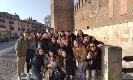 17 alumnos  del IES Navarro Santafé de Villena participan en una semana Internacional en Carpi, Italia