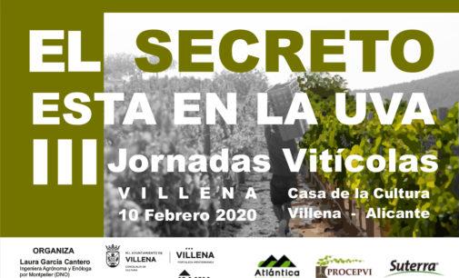 """Villena acoge las terceras jornadas vitícolas """"El secreto está en la uva»"""