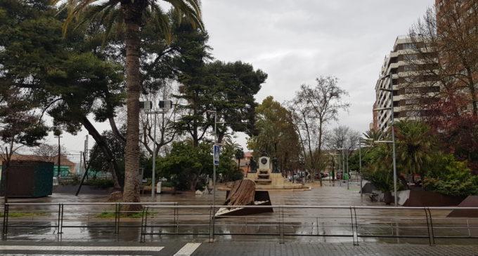 El Ayuntamiento inicia podas de urgencia en Villena