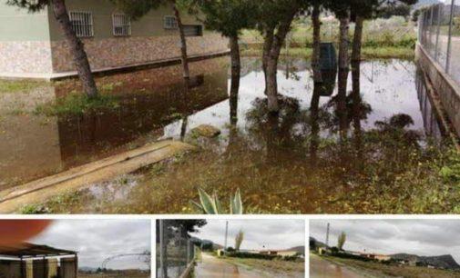 Zonas anegadas y mosquitos, la cara B de La Laguna